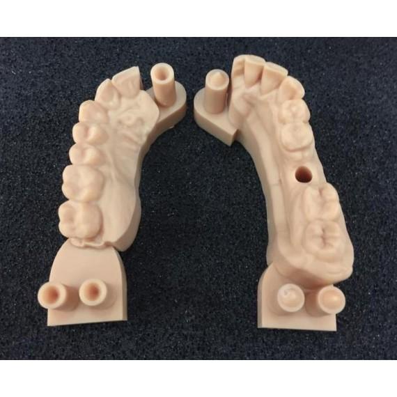 Polimeri da file - Stampa 3D modelli e provvisori
